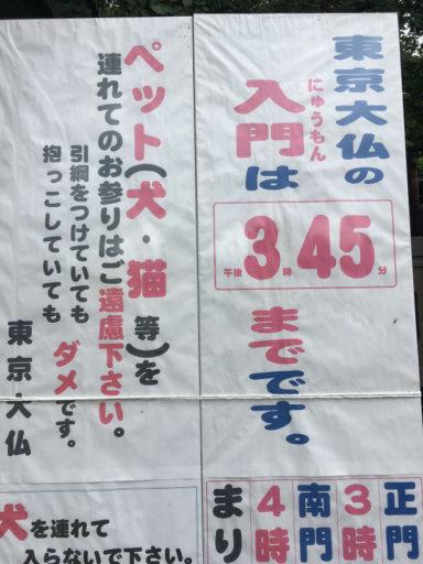 東京大仏 乗蓮寺 入門時間